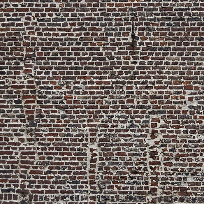 Le cheval dans le mur